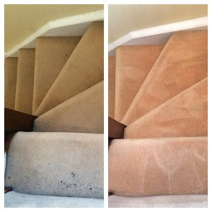 We can clean any types of carpeted stairs in your home.